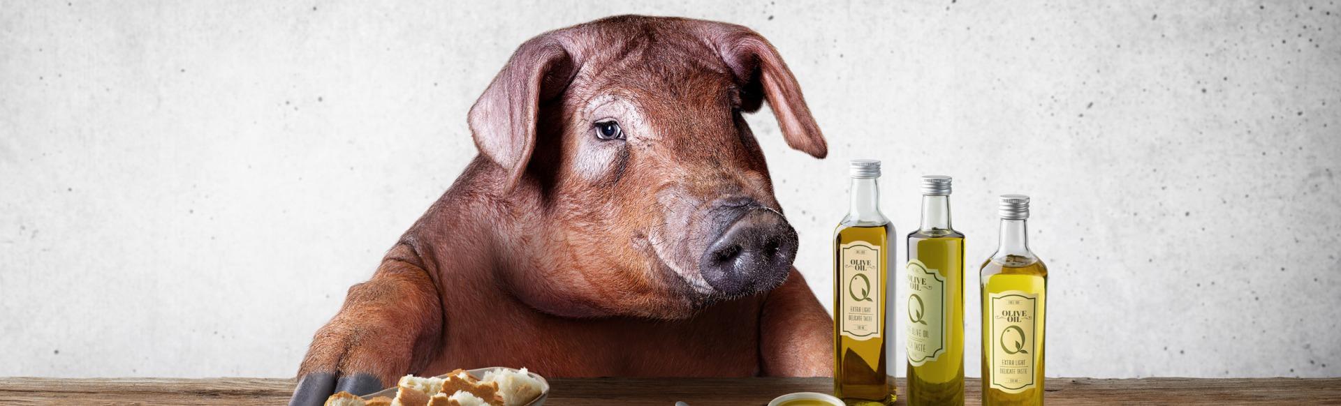 Varkensvlees
